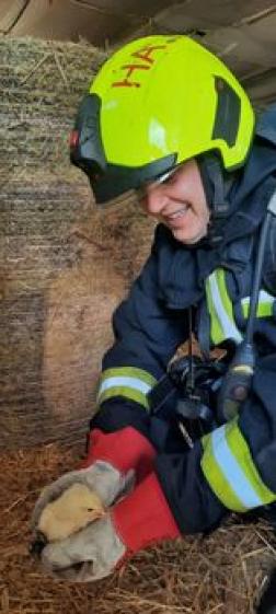 Az állatokat sikerült az épület lángoktól védett részébe terelni a tűzoltóknak