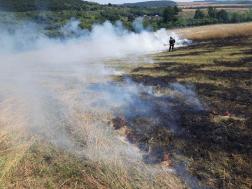 Vegetációs tűz oltása Keszegen
